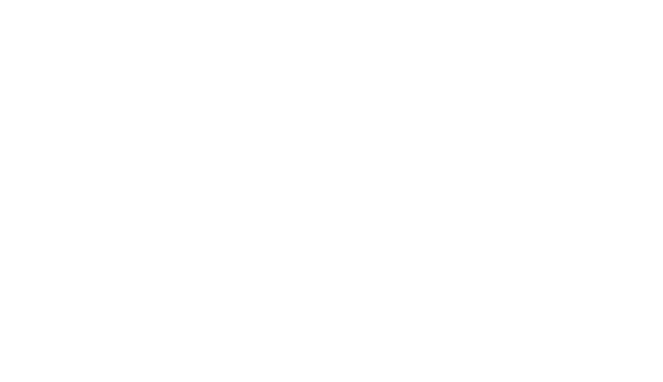 Paragon Marketing